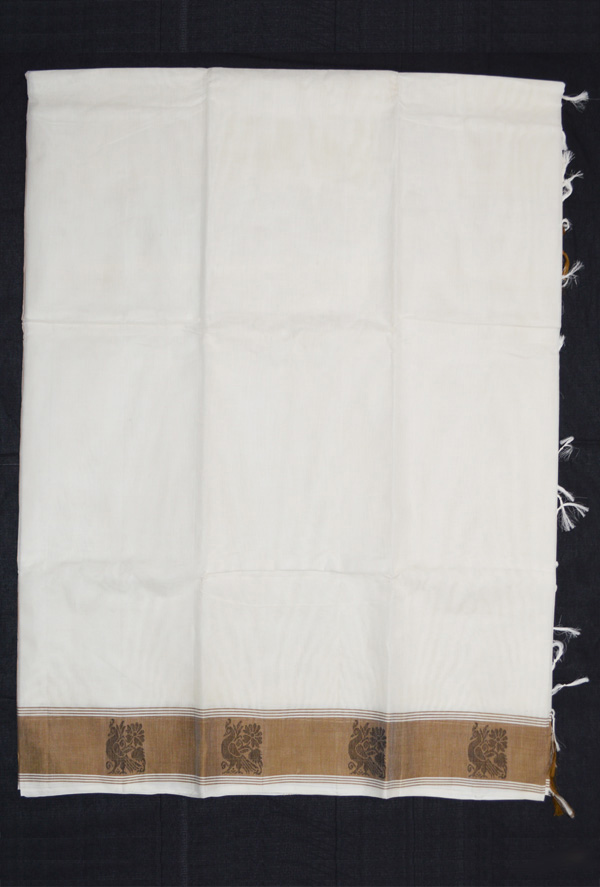 Kanchi Cotton US_1320